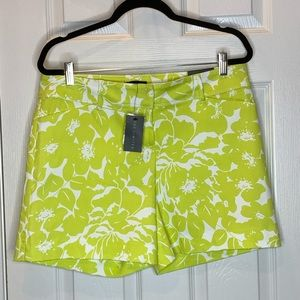 Woman's tailored shorts size 12 the limited NWT
